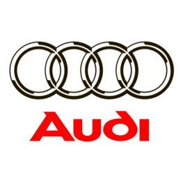 Фото к статье Ремонт рулевых реек Ауди (Audi) | Компания Автодел-Сервис