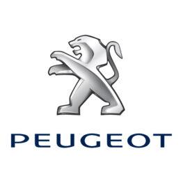 Фото к статье Ремонт рулевых реек Пежо (Peugeot) | Компания Автодел-Сервис