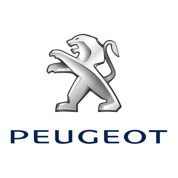 Изображение к статье Ремонт рулевых реек Пежо (Peugeot)